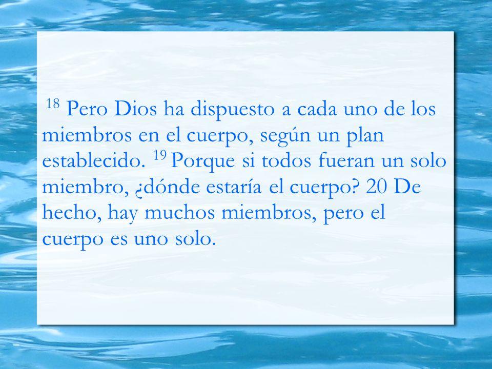 18 Pero Dios ha dispuesto a cada uno de los miembros en el cuerpo, según un plan establecido.