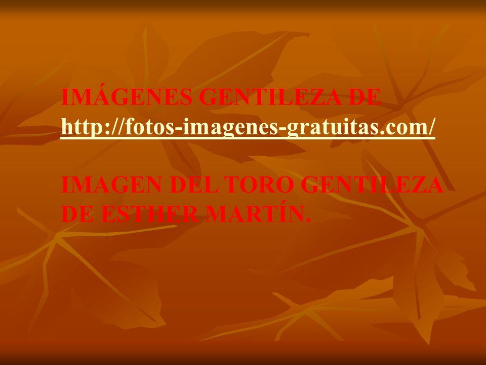 IMÁGENES GENTILEZA DE http://fotos-imagenes-gratuitas.com/ IMAGEN DEL TORO GENTILEZA DE ESTHER MARTÍN.