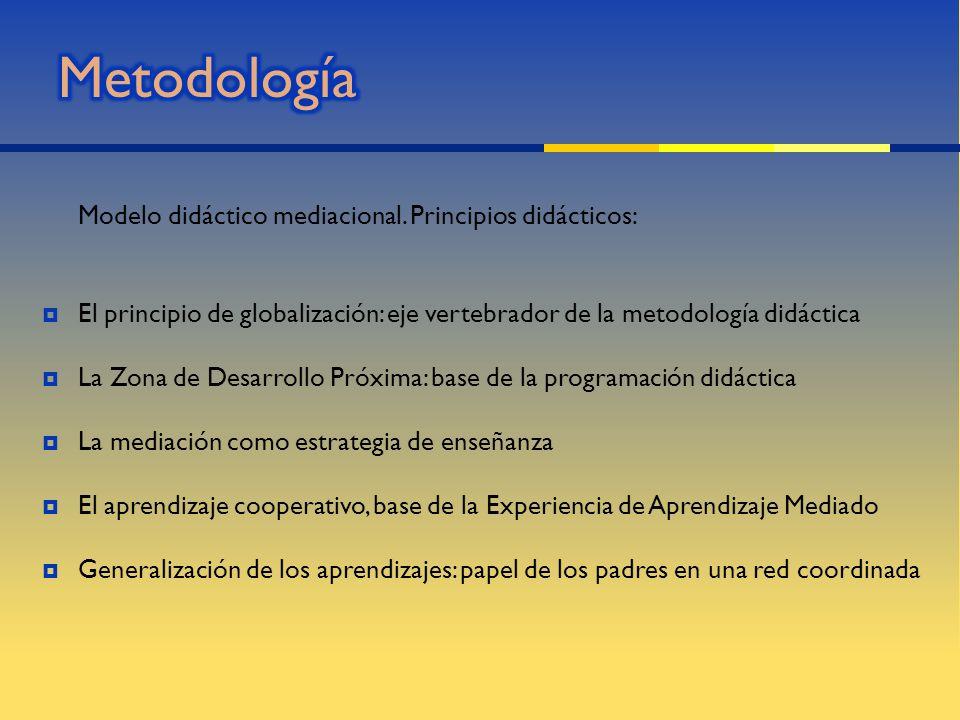 Metodología Modelo didáctico mediacional. Principios didácticos: