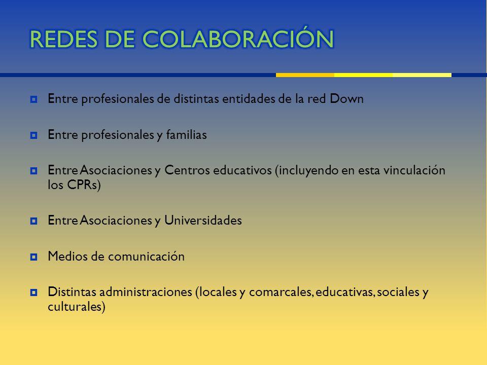 REDES DE COLABORACIÓN Entre profesionales de distintas entidades de la red Down. Entre profesionales y familias.