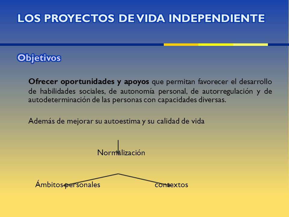 LOS PROYECTOS DE VIDA INDEPENDIENTE Objetivos