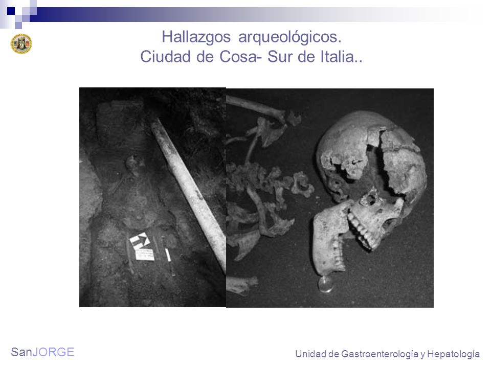 Hallazgos arqueológicos. Ciudad de Cosa- Sur de Italia..