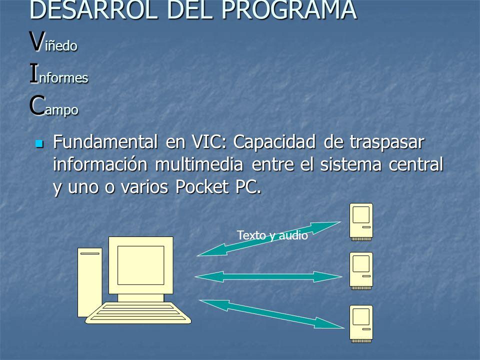 DESARROL DEL PROGRAMA Viñedo Informes Campo