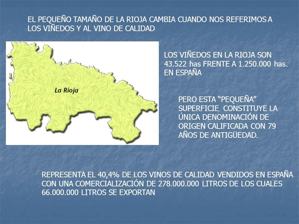 EL PEQUEÑO TAMAÑO DE LA RIOJA CAMBIA CUANDO NOS REFERIMOS A LOS VIÑEDOS Y AL VINO DE CALIDAD