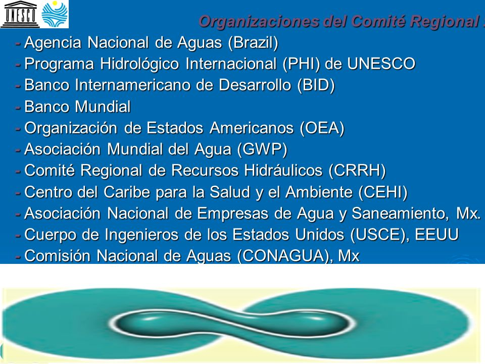 Organizaciones del Comité Regional : - Agencia Nacional de Aguas (Brazil) - Programa Hidrológico Internacional (PHI) de UNESCO - Banco Internamericano de Desarrollo (BID) - Banco Mundial - Organización de Estados Americanos (OEA) - Asociación Mundial del Agua (GWP) - Comité Regional de Recursos Hidráulicos (CRRH) - Centro del Caribe para la Salud y el Ambiente (CEHI) - Asociación Nacional de Empresas de Agua y Saneamiento, Mx.