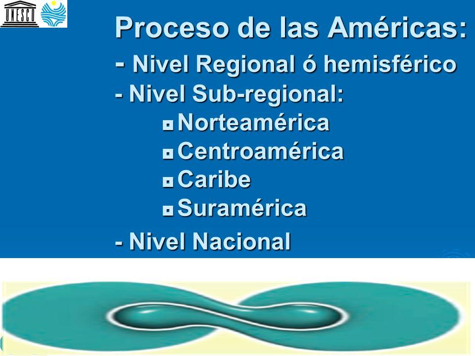 Proceso de las Américas: - Nivel Regional ó hemisférico - Nivel Sub-regional:  Norteamérica  Centroamérica  Caribe  Suramérica - Nivel Nacional