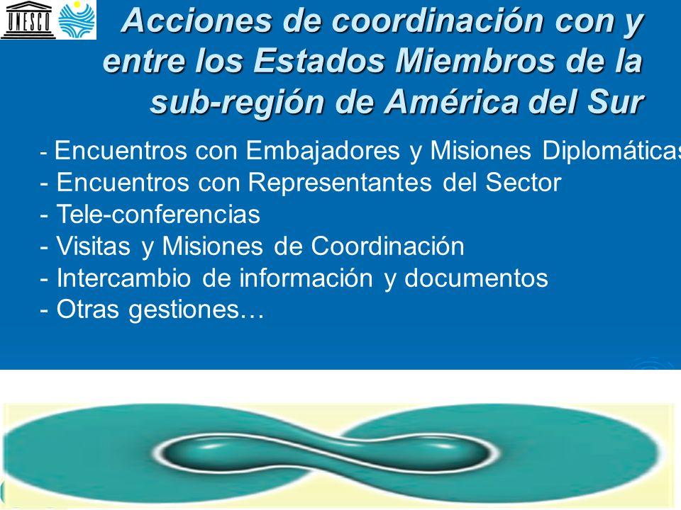 Acciones de coordinación con y entre los Estados Miembros de la sub-región de América del Sur