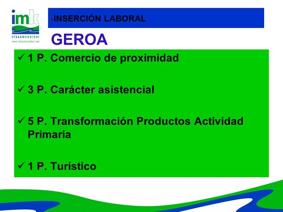 GEROA 1 P. Comercio de proximidad 3 P. Carácter asistencial