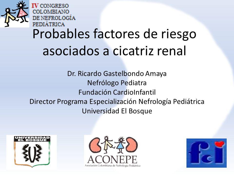 Probables factores de riesgo asociados a cicatriz renal
