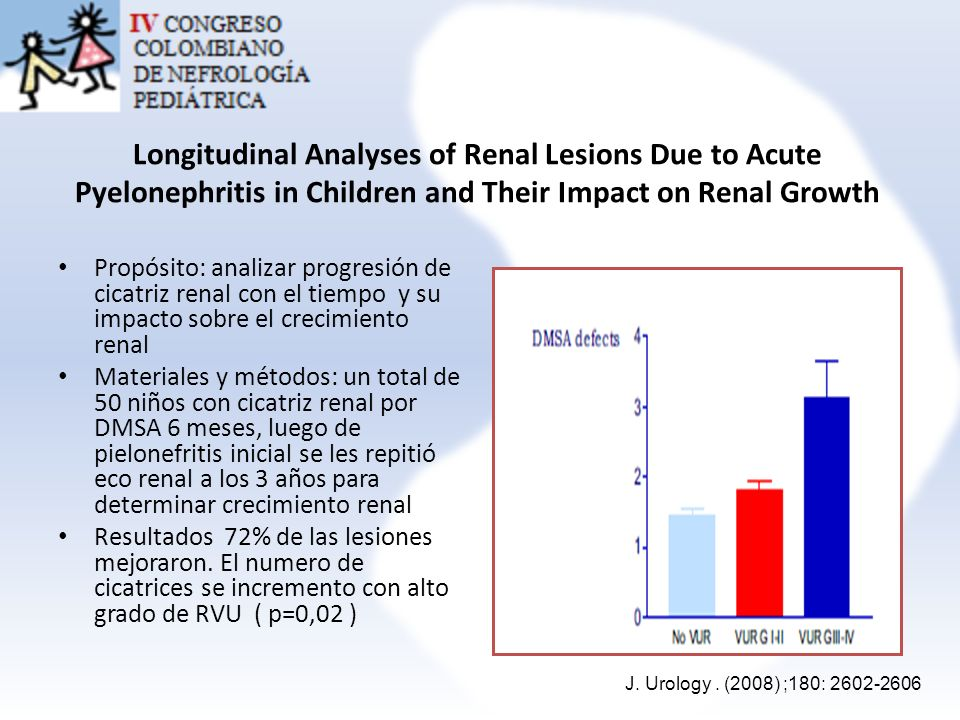 Longitudinal Analyses of Renal Lesions Due to Acute Pyelonephritis in Children and Their Impact on Renal Growth