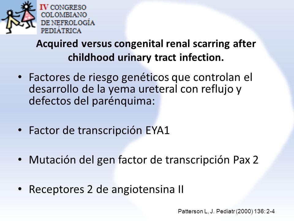 Factor de transcripción EYA1