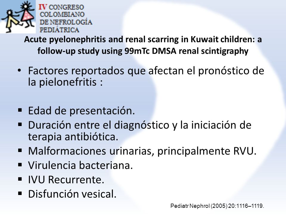 Acute pyelonephritis and renal scarring in Kuwait children: a follow-up study using 99mTc DMSA renal scintigraphy