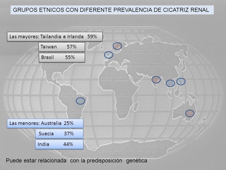 GRUPOS ETNICOS CON DIFERENTE PREVALENCIA DE CICATRIZ RENAL