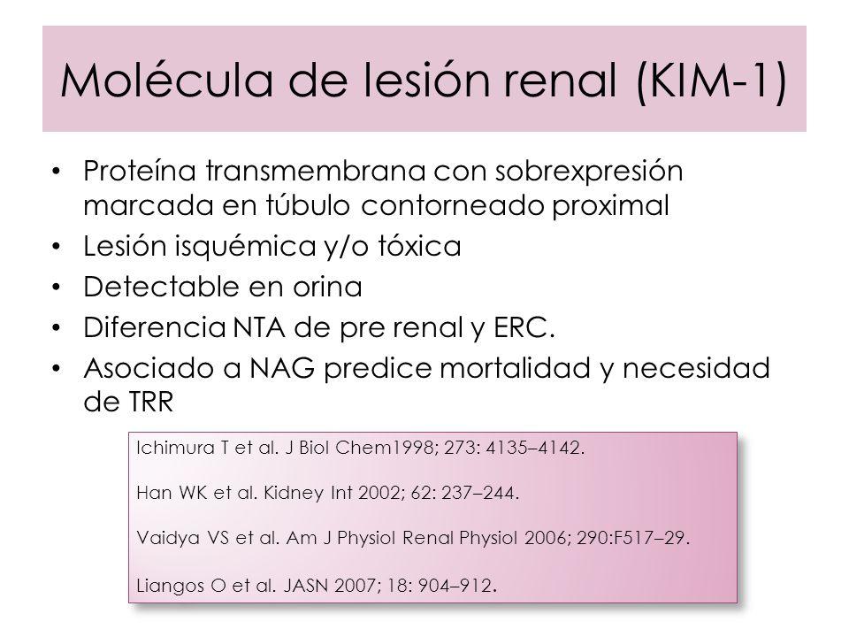 Molécula de lesión renal (KIM-1)