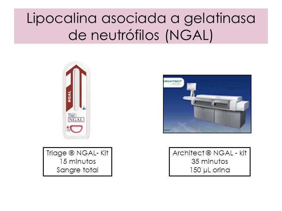 Lipocalina asociada a gelatinasa de neutrófilos (NGAL)