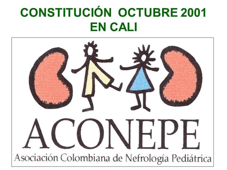 CONSTITUCIÓN OCTUBRE 2001 EN CALI