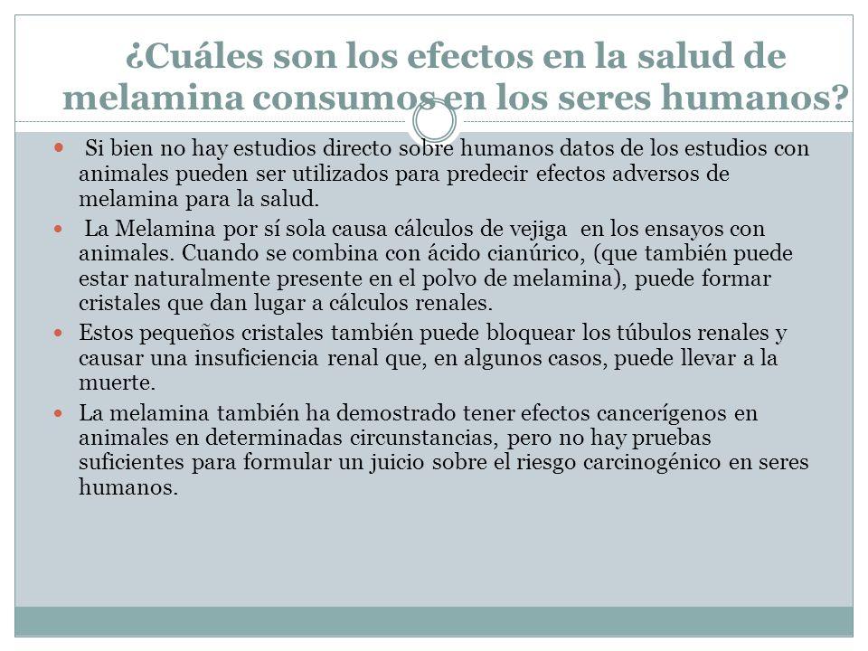 ¿Cuáles son los efectos en la salud de melamina consumos en los seres humanos