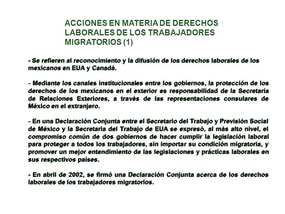 ACCIONES EN MATERIA DE DERECHOS LABORALES DE LOS TRABAJADORES MIGRATORIOS (1)