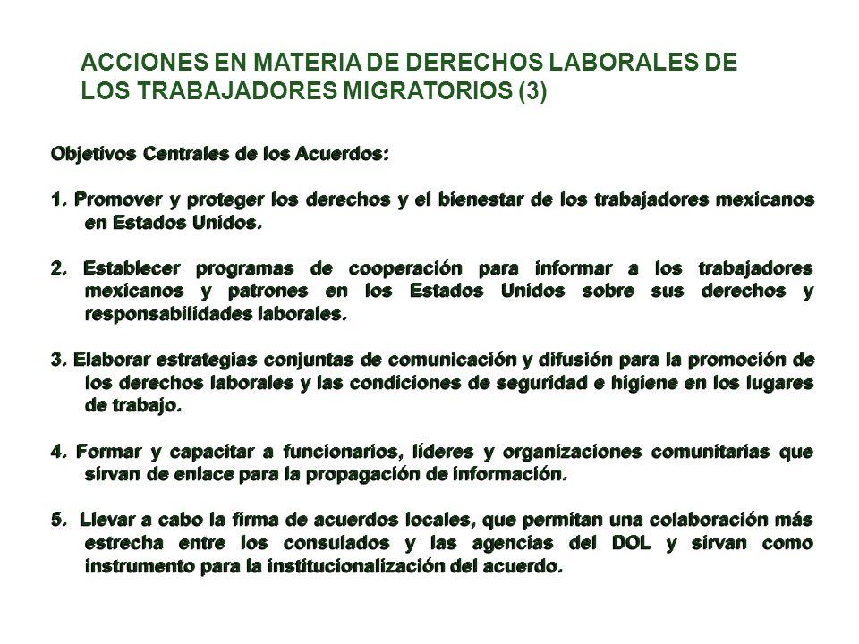 ACCIONES EN MATERIA DE DERECHOS LABORALES DE LOS TRABAJADORES MIGRATORIOS (3)