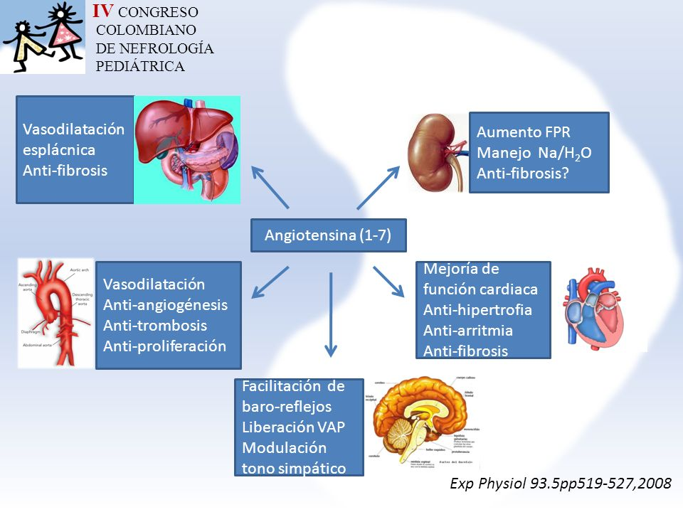 IV CONGRESO Vasodilatación esplácnica Aumento FPR Anti-fibrosis