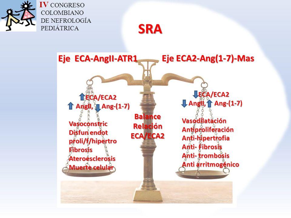 Balance Relación ECA/ECA2