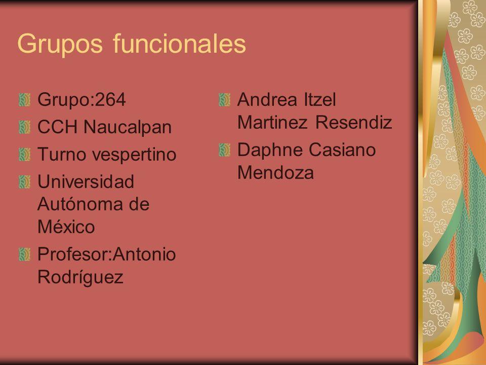 Presentacion De Los Grupos Funcionales: Grupos Funcionales Grupo:264 CCH Naucalpan Turno