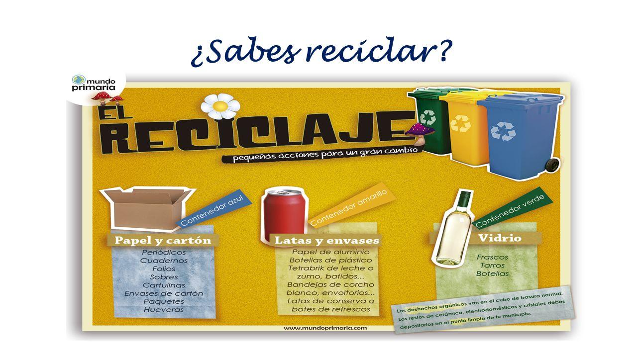 ¿Sabes reciclar