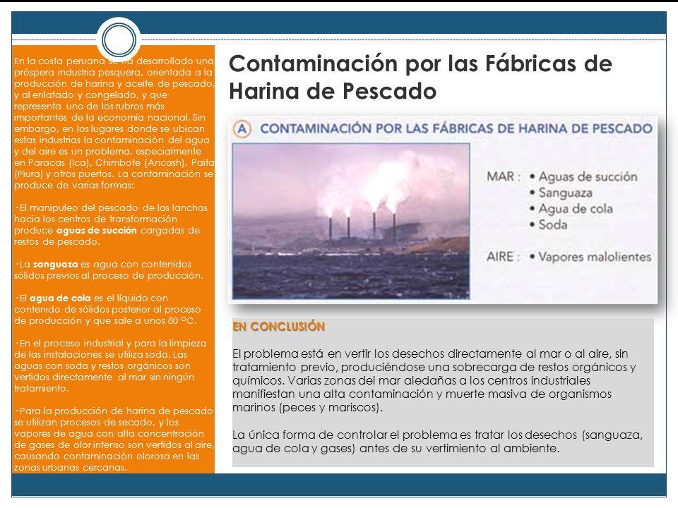 Contaminación por las Fábricas de Harina de Pescado