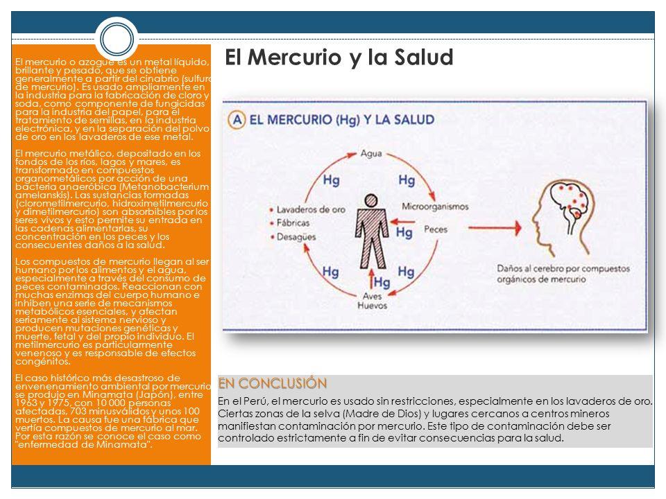 El Mercurio y la Salud EN CONCLUSIÓN