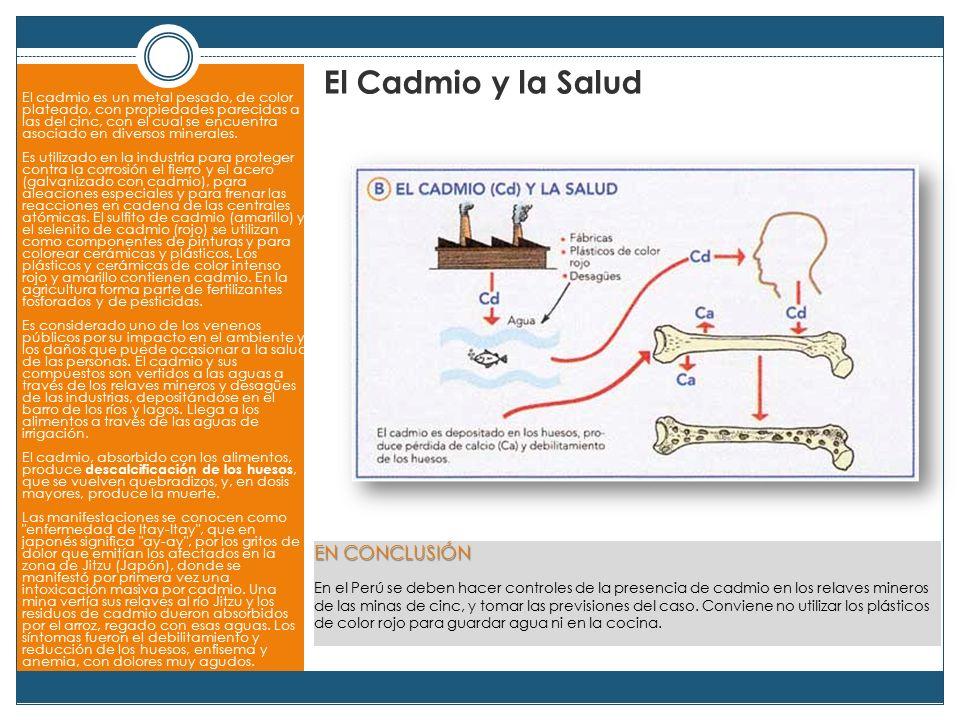 El Cadmio y la Salud EN CONCLUSIÓN