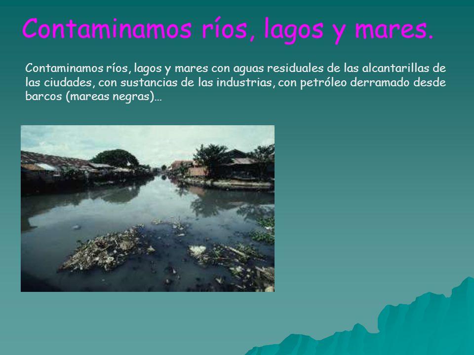 Contaminamos ríos, lagos y mares.
