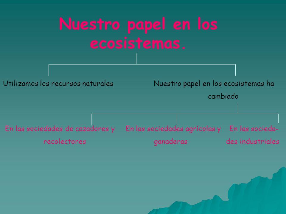 Nuestro papel en los ecosistemas.