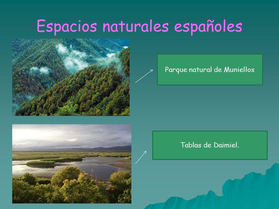 Espacios naturales españoles