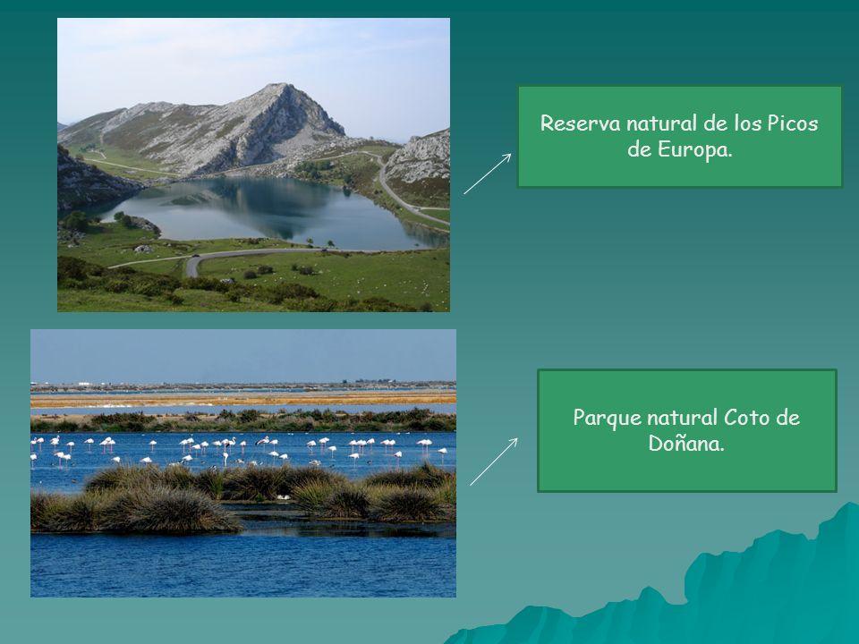 Reserva natural de los Picos de Europa.