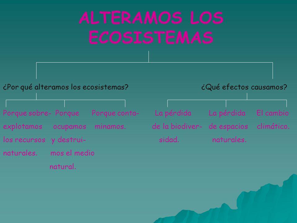 ALTERAMOS LOS ECOSISTEMAS