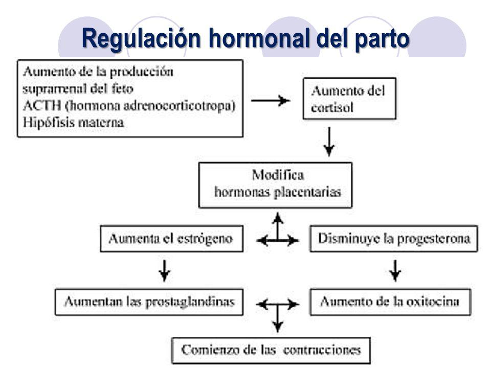pdf The Routledge International Handbook