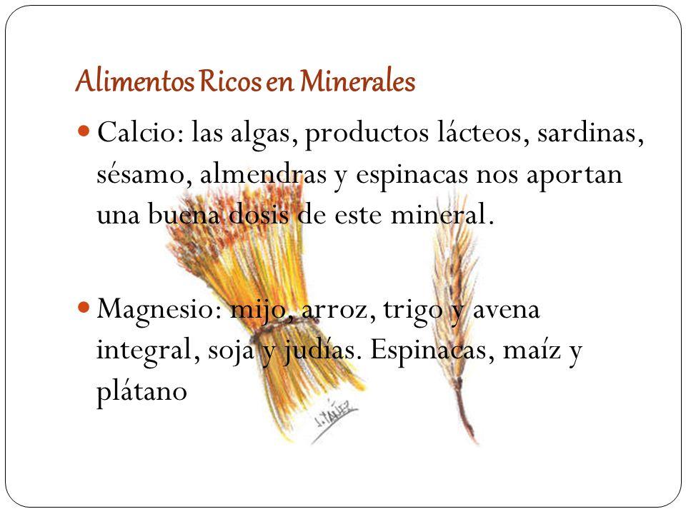 Vitaminas y minerales ppt descargar - Alimentos ricos en calcio y hierro ...