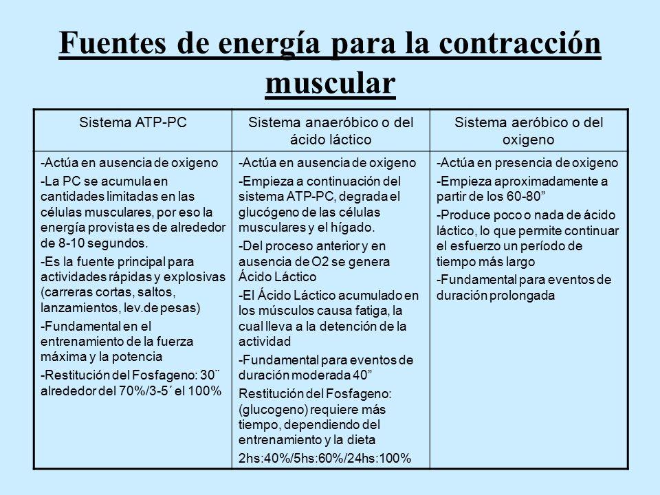 Fuentes de energía para la contracción muscular