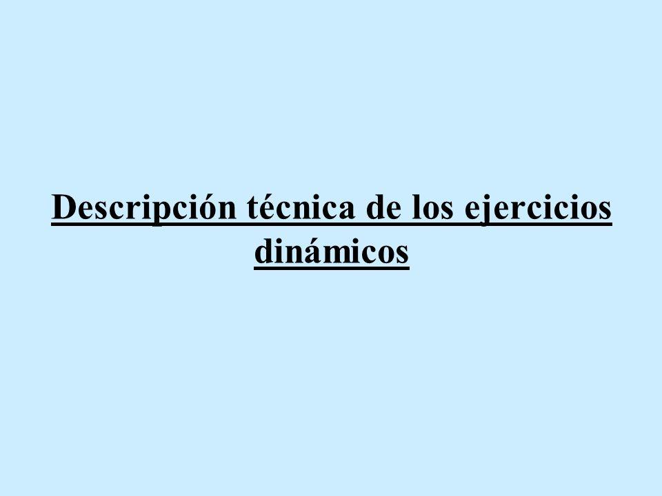 Descripción técnica de los ejercicios dinámicos