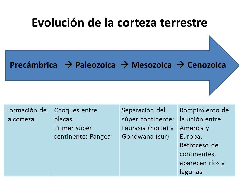 En que parte de la corteza terrestre se encuentran los puntos de separacion