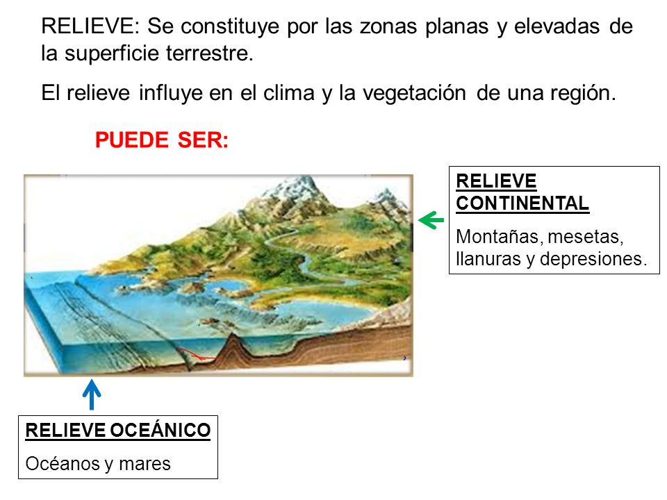 El relieve influye en el clima y la vegetación de una región.