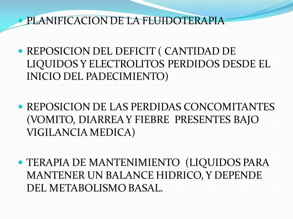 PLANIFICACION DE LA FLUIDOTERAPIA