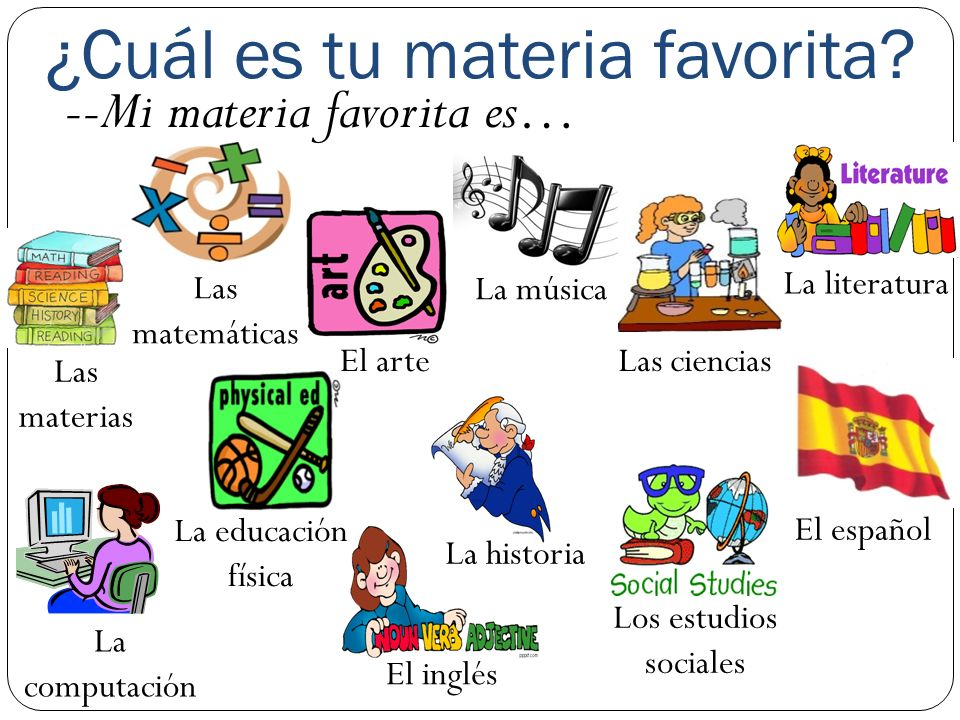 ¿Cuál es tu materia favorita