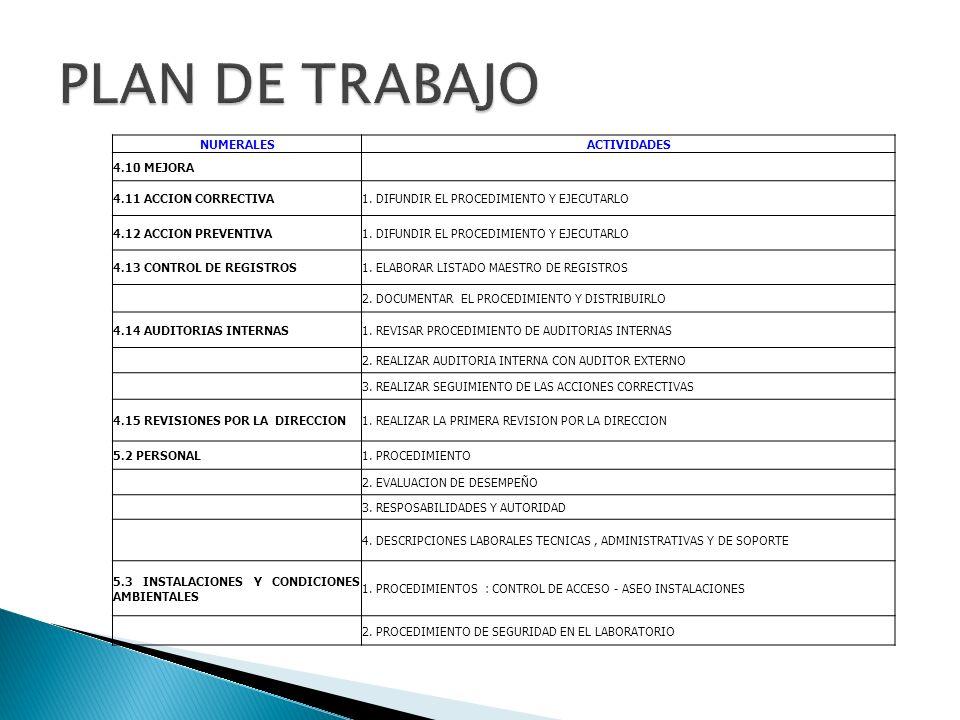 PLAN DE TRABAJO NUMERALES ACTIVIDADES 4.10 MEJORA