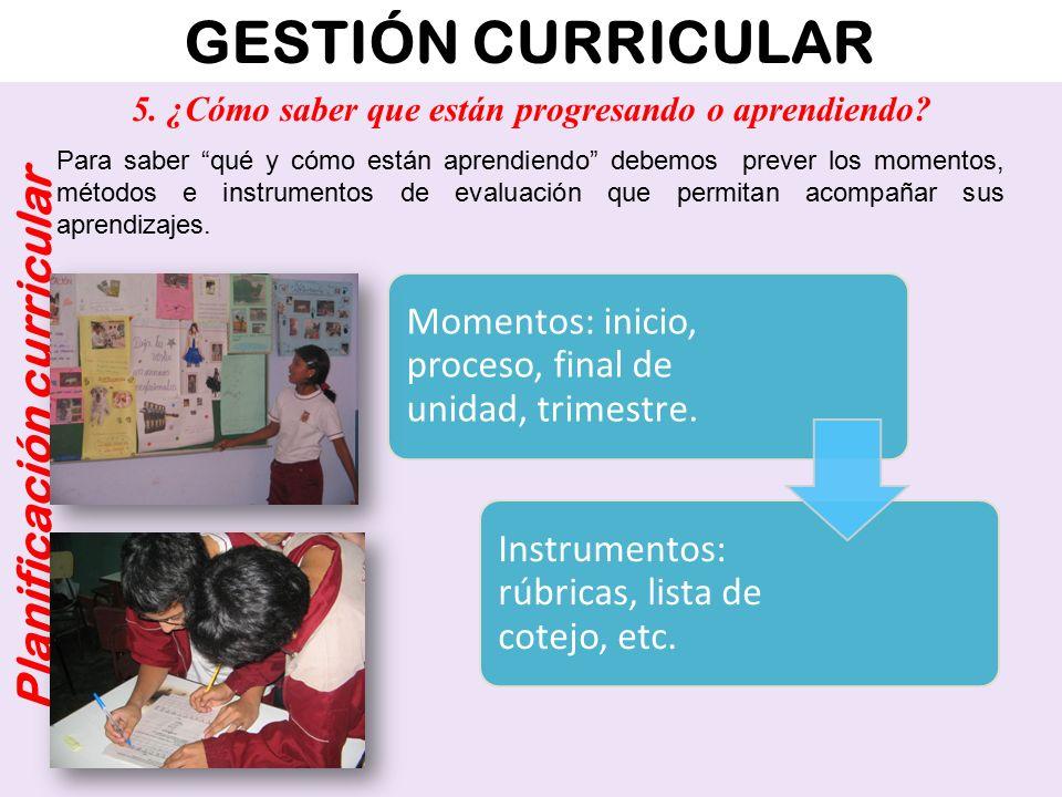 GESTIÓN CURRICULAR Planificación curricular