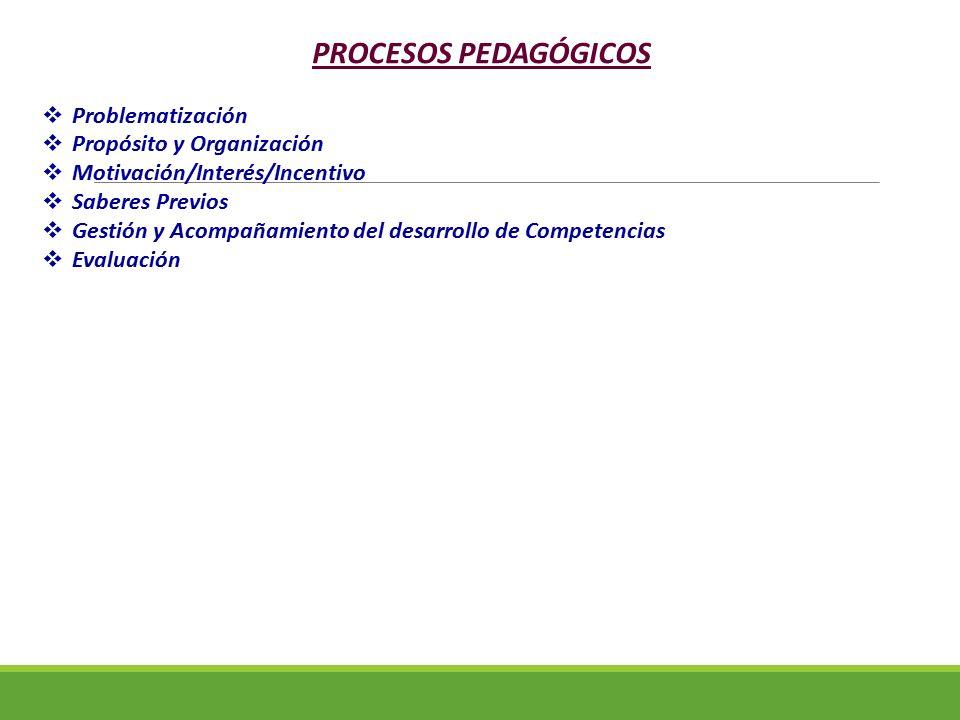PROCESOS PEDAGÓGICOS Problematización Propósito y Organización