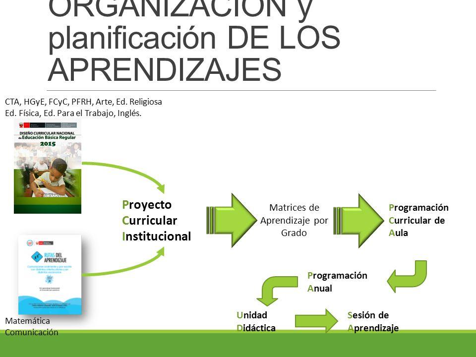 ORGANIZACIÓN y planificación DE LOS APRENDIZAJES