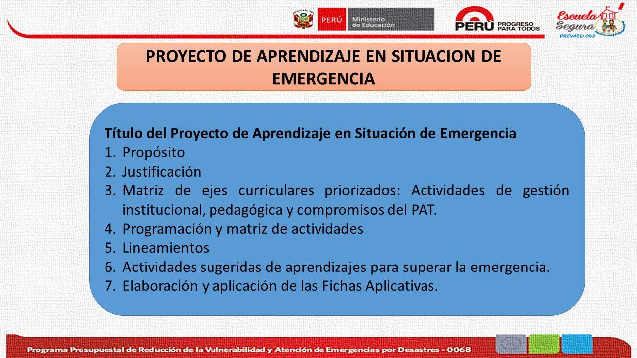 PROYECTO DE APRENDIZAJE EN SITUACION DE EMERGENCIA