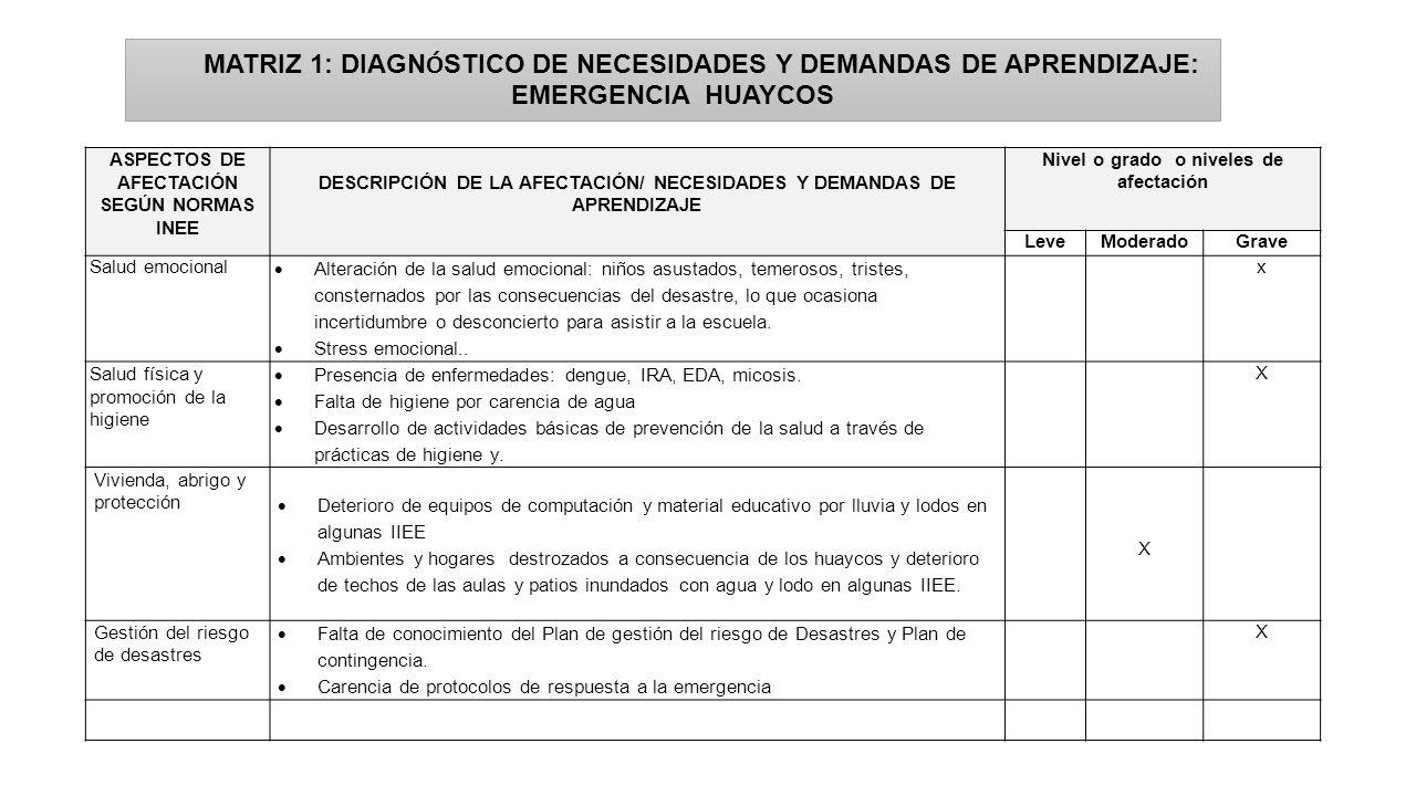 MATRIZ 1: DIAGNÓSTICO DE NECESIDADES Y DEMANDAS DE APRENDIZAJE: EMERGENCIA HUAYCOS