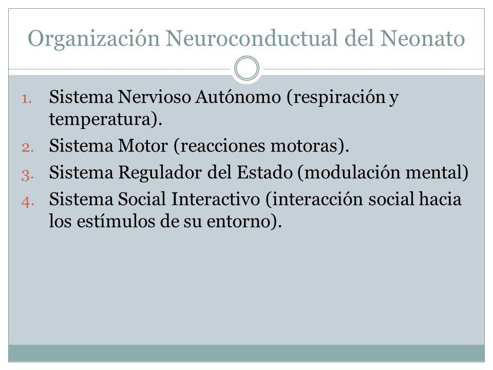 Organización Neuroconductual del Neonato